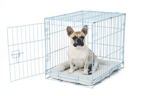 Single Door Metal Dog Crate Carlson Pet Deluxe Pet Crate