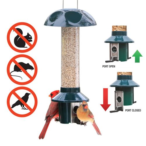 Roamwild PestOff Squirrel Proof Bird Feeder Mixed Seed Sunflower Heart Version-Squirrel Proof Bird Feeders