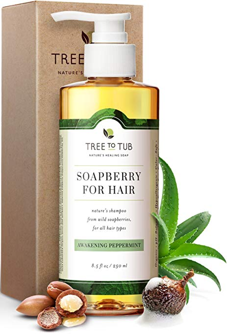 Organic Argan Shampoo For Oily Hair