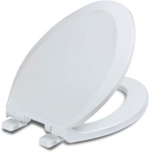 self-closed toilet seat