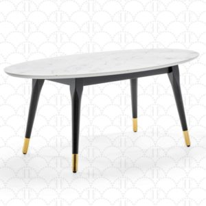 Mid-Century Modern Living Room Coffee Table